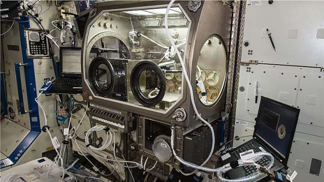Астронавты МКС изготовили гаечный ключ на 3D-принтере