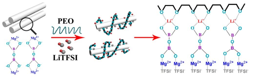 Схема движения ионов лития через композитный электролит, состоящий из наностержней бората магния, полиэтиленгликоля и LiTFSI
