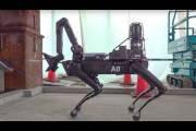 Робот Spot
