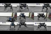 Робот ANYmal