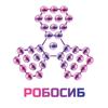 РобоСиб 2020