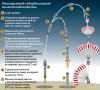 Многоразовый суборбитальный космический комплекс